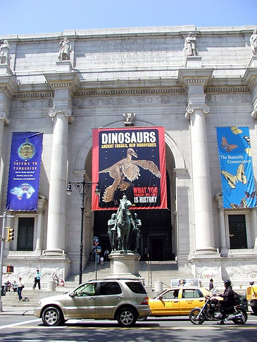 American Museum of Natural History - New York (New York)
